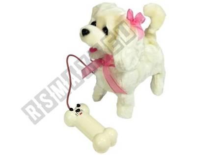 interaktiver Hund Weiß